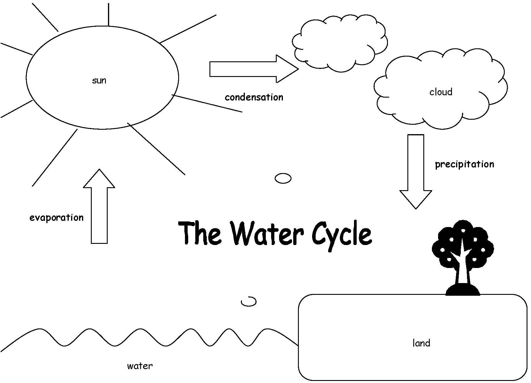 Water Cycle Unit for 2nd Grade